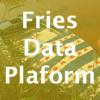 Fries Data Platform: de implementatie